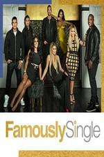Famously Single: Season 1