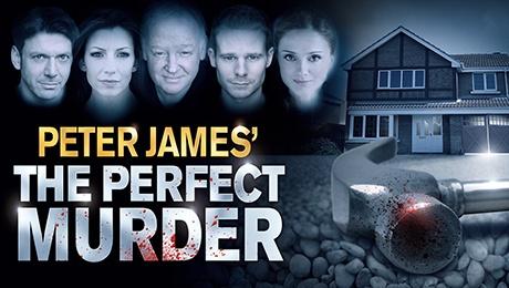 The Perfect Murder: Season 1