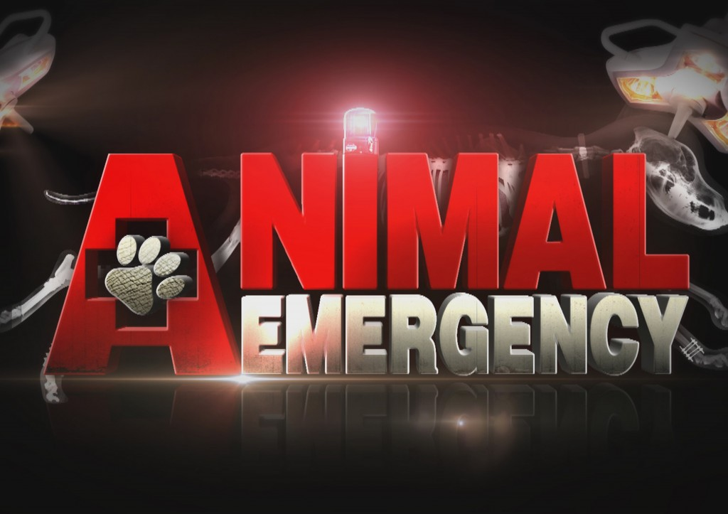 Animal Emergency: Season 1