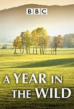 A Year In The Wild: Season 1