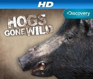 Hogs Gone Wild: Season 1
