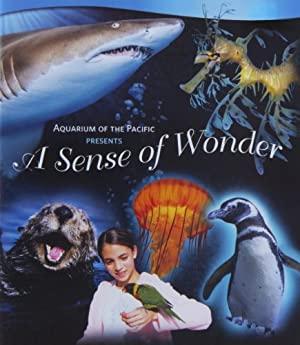 Estima Sense Of Wonder