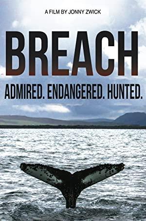 Breach 2015