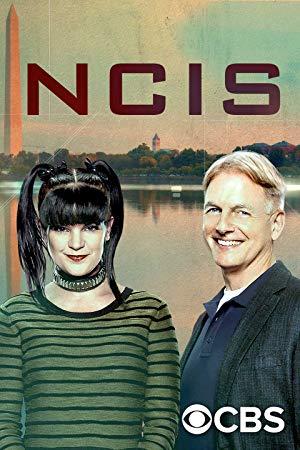 Ncis: Season 17