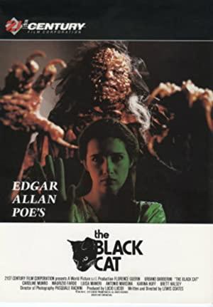 The Black Cat (1991)