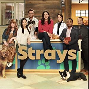 Strays: Season 1
