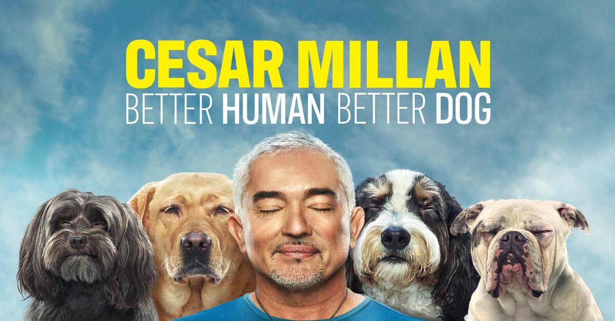 Cesar Millan: Better Human Better Dog: Season 1