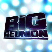 The Big Reunion: Season 2