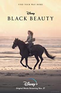Black Beauty 2020