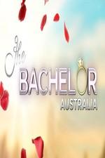 The Bachelor (au): Season 5