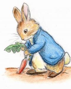 Peter Rabbit 2013: Season 1