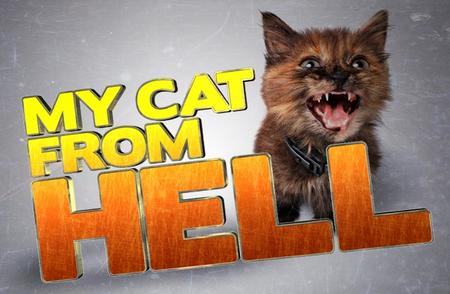 My Cat From Hell: Season 4