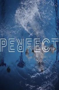 Perfect 2016