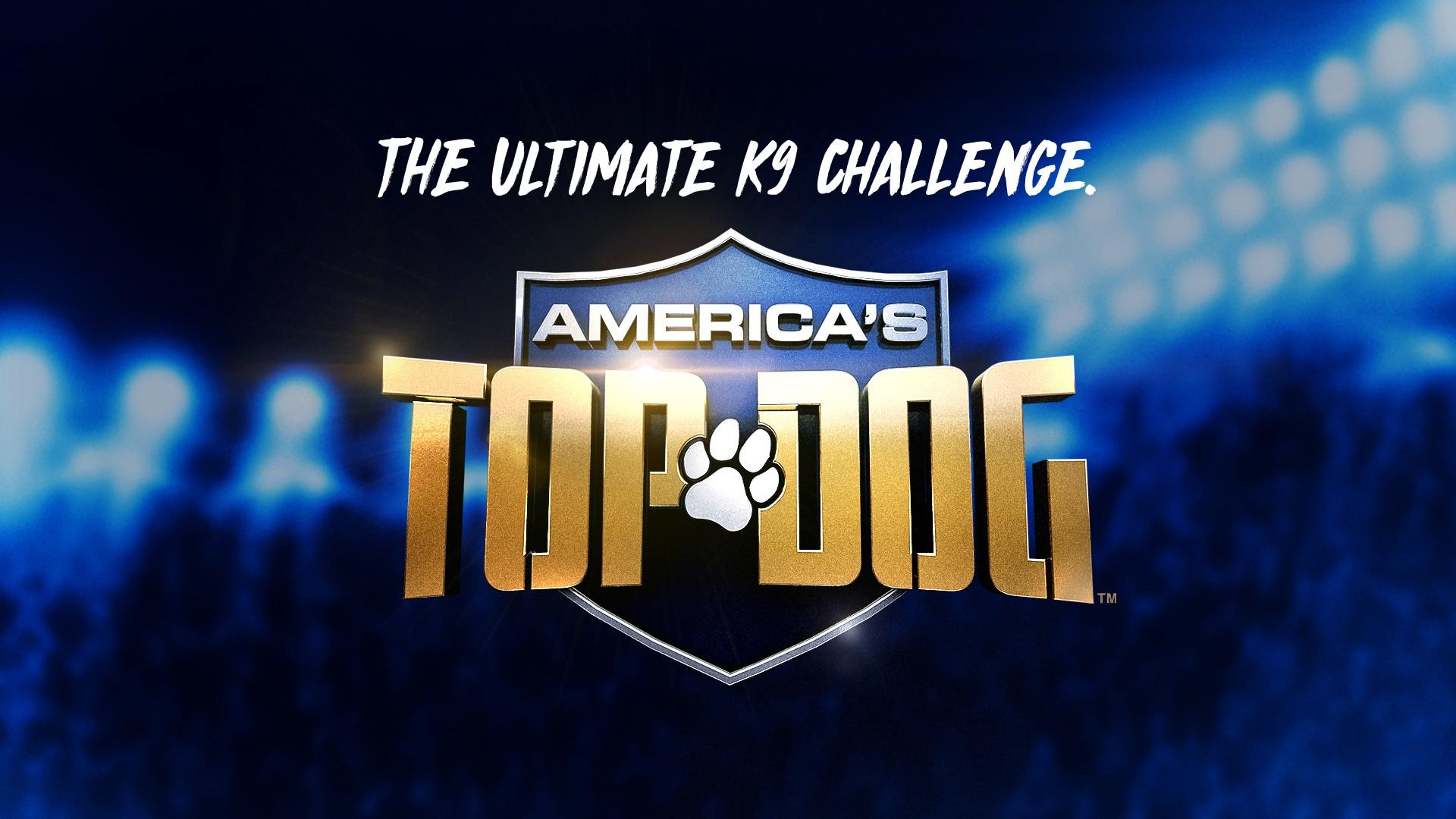 America's Top Dog: Season 1