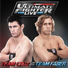 The Ultimate Fighter: Season 15