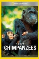 The New Chimpanzees